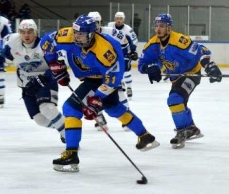 Брянские хоккеисты проиграли место в плей-офф
