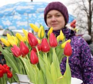 К 8 Марта на рынке появились брянские тюльпаны