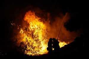 В Брянске огонь уничтожил склад продукции