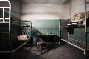 Брянский суд отмерил убийце матери 9 с половиной лет «строгача»