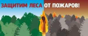 В Брянской области ввели особый противопожарный режим