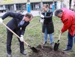 Градоначальник Брянска посадил деревья на новых аллеях