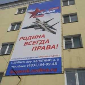Истребитель пошел в атаку на брянскую власть