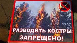 В четырёх районах Брянщины ввели особый противопожарный режим