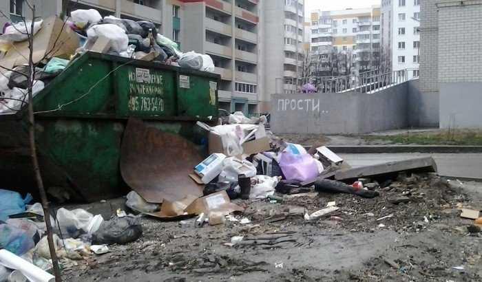Субботники в Брянске обернулись новыми свалками