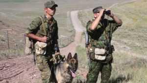 Пограничники предупредили брянцев о вымогателях