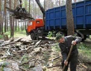 Брянский лес очистили от мусора