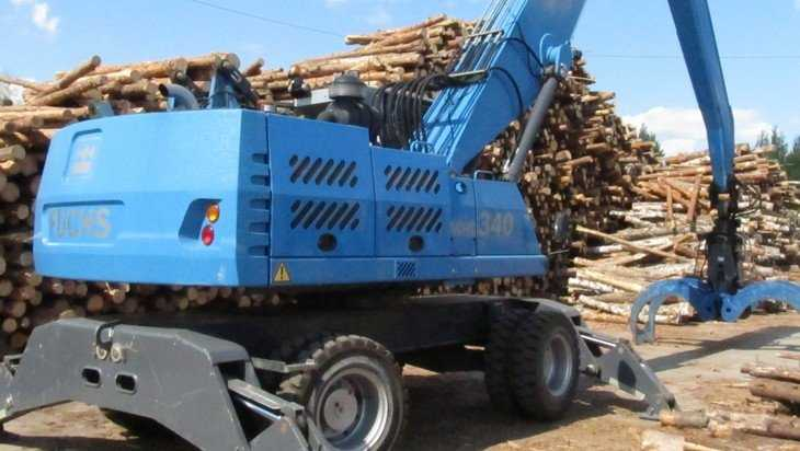 Брянский губернатор выступил против перепродажи леса