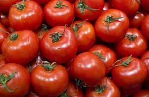 Брянские инспекторы забраковали африканские томаты