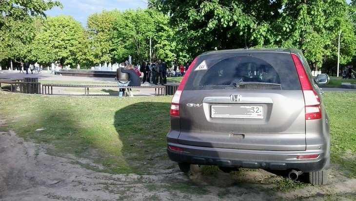 Часть брянского парка «Соловьи» шариковы превратили в стоянку
