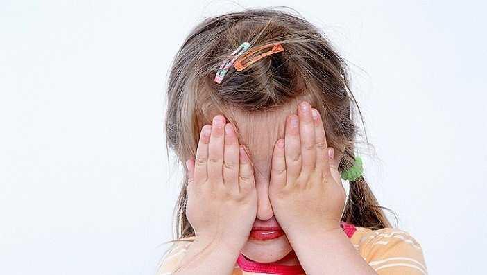 Насильника 9-летней брянской девочки посадили на 12 лет