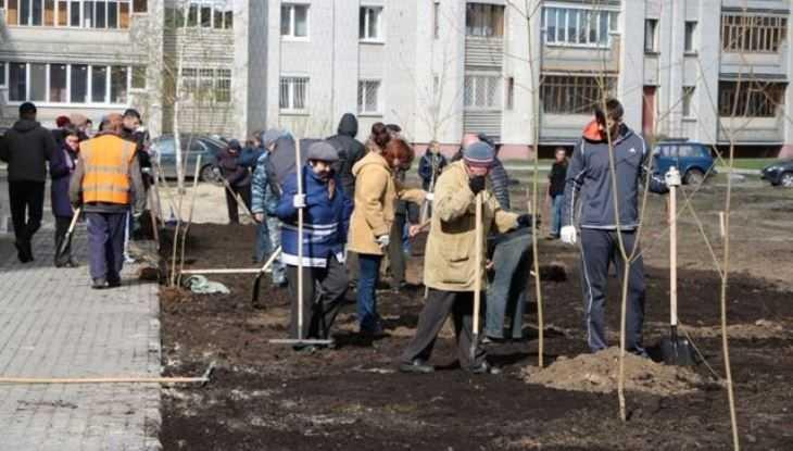 Власти попросили у горожан денег на сквер в Фокинском районе Брянска