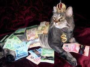 На Брянщине живут два миллиардера и почти 3 тысячи миллионеров