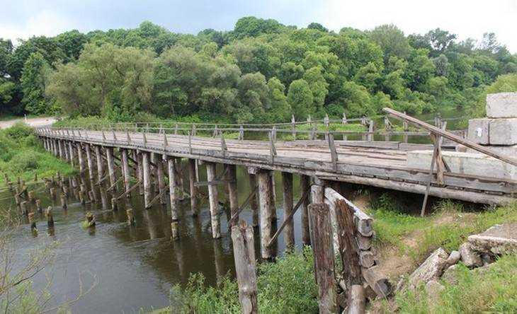 брянские мосты фото охотится обезумевших