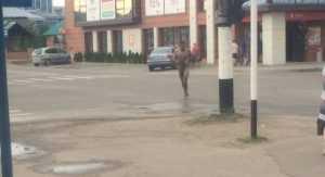В Новозыбкове голый мужчина устроил променад