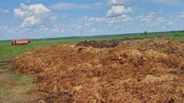 Брянцы обвинили ретивых экологов в подрыве сельского хозяйства