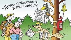 Брянские лесники наказали нарушителей на полмиллиона рублей