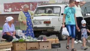 Брянские специалисты уличили белорусов в незаконной торговле