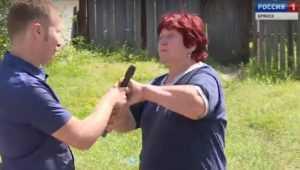 Хозяйка «резинового» дома напала на сотрудников ГТРК «Брянск»