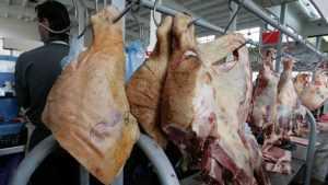 Саратовский губернатор запретил ввоз брянской свинины