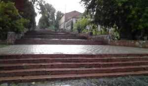 Власти отремонтируют главную лестницу Брянска