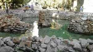 Брянские фонтаны назвали болотом