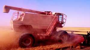 На зерновой битве в брянском поле сгорел комбайн
