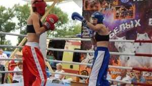 В брянском Локте спортплощадку открыли битвой кикбоксёров