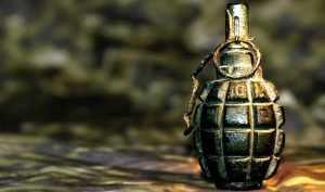 В Володарском районе Брянска обнаружили гранату