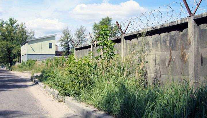 Брянцы заплатят 200 тысяч за нескошенную траву