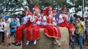 Свенская ярмарка позовёт гостей на брянский луг 27 августа