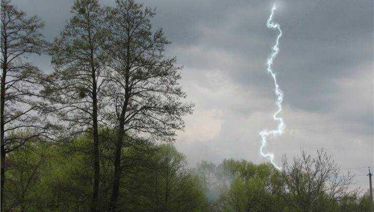 Брянцев предупредили о шквальном ветре и грозовых ливнях