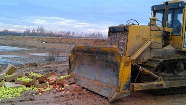 Брянцы за год уничтожили 30 вагонов контрабандных продуктов