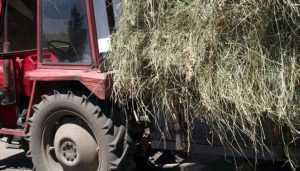 В брянской деревне сгорел тракторный прицеп с сеном