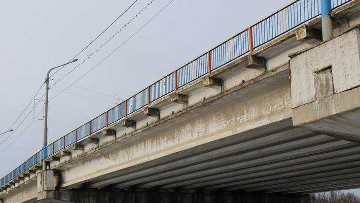 В Брянске водолазы спасли упавшего с Черного моста парня