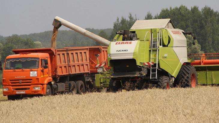 Брянская область пошла на зерновой рекорд