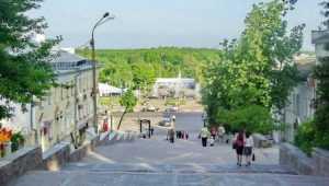 Власти Брянска изучат варианты спасения лестницы на бульваре Гагарина
