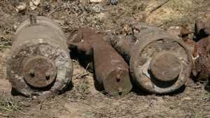 В брянском лесу нашли схрон артиллерийских снарядов