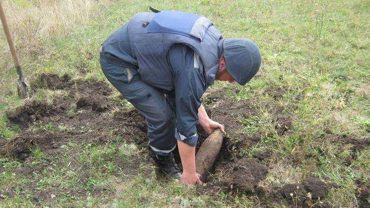 На берегу брянской Десны обнаружили снаряд