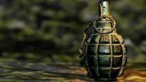 Брянских дачников напугала граната