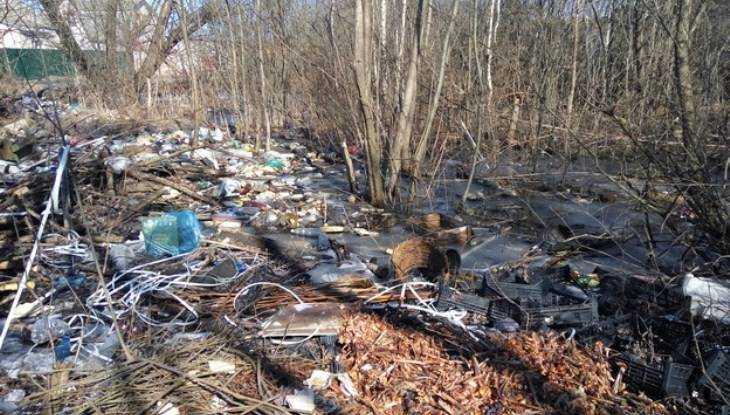 Прокуратура Брянска велела убрать свалку на месте пожарища