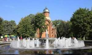 В Брянске развернулся фестиваль «Яблочный Спас»