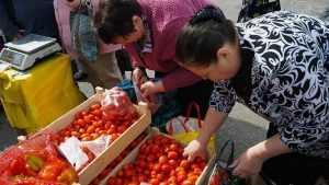 Тонны яблок, груш и зерна купили брянцы на ярмарках выходного дня