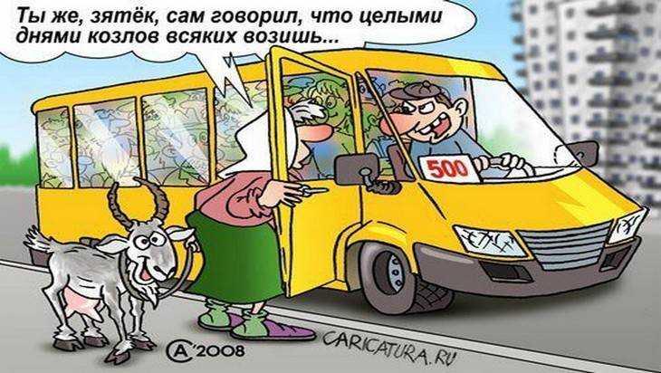 В Брянске наказан водитель автобуса, обматеривший инвалида