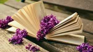 В Брянске откроется библиоплощадка «По волнам знаний»