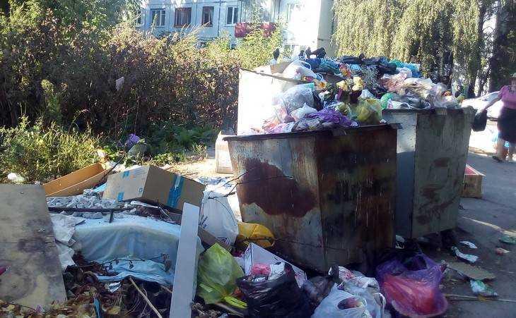 В Брянске улица Горбатова по вине коммунальщиков выросли горы мусора