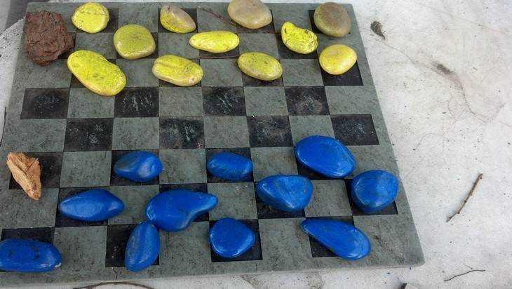 Брянская шашистка выиграла золотую медаль в Болгарии