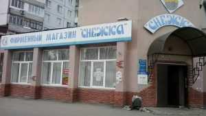В Брянске выставили на продажу АЗС и магазин «Снежка»