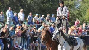 Локотские рысаки порадовали зрителей на конном празднике