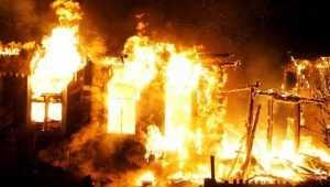 В брянской деревне сгорели два брата и их сосед